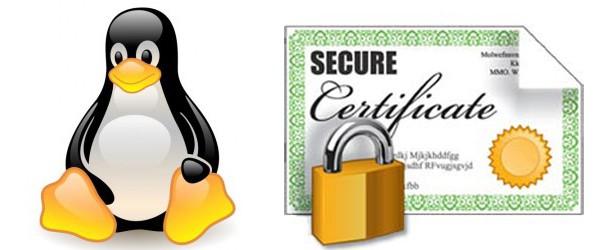 LDAP und eigene Zertifikate unter Linux (Debian) verwenden - PITS Online